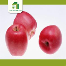 hot selling fresh delicious red star apples export price from China