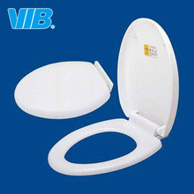 Sanitary toilet seat for novelty one/two- piece toilets