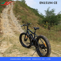 26 inch carbon fiber electric pedal assisted bicycle with EN15194