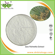 DN Supply High Quality Extract Powder Saw Palmetto Fruit