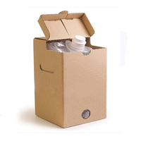 Transparent plastic bag in box packaging for wine with butterfly spout