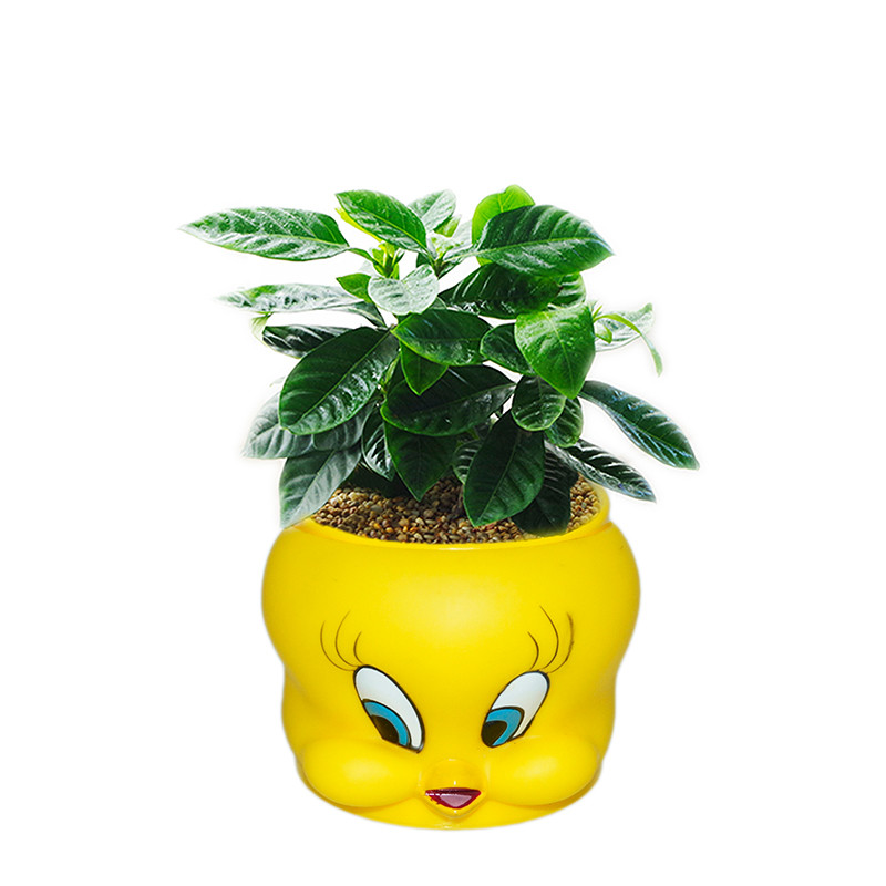 plastic plant pot looney tunes shape with handle for kids