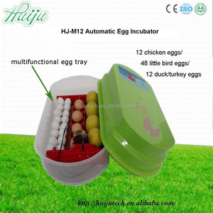home use newest type small egg incubator/12 eggs hatching machine HJ-M12