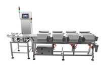 Weight Sorting Machine For Fruit