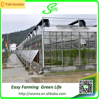Modern agricultural equipments glass commercial greenhouses