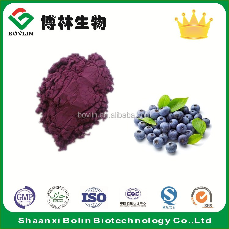 Factory Supply Natural Acai Berry Extract Powder