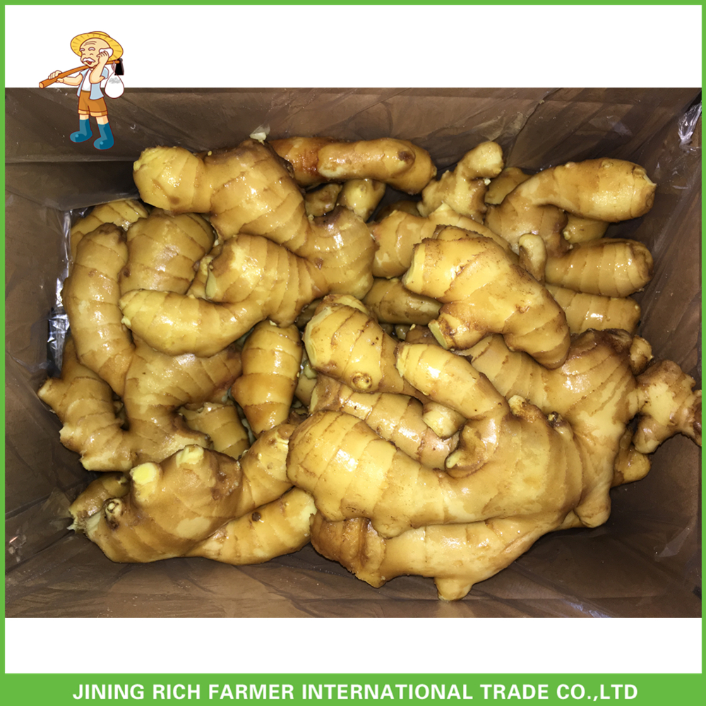 Fresh Full Air Dry Ginger 2017 Ginger Price