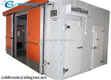 Prefab refrigerator solar freezer cold room in Africa