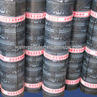 APP modified bitumen waterproof products specially designed for low temperature