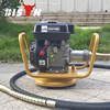 BISON CHINA electric portable concrete vibrator