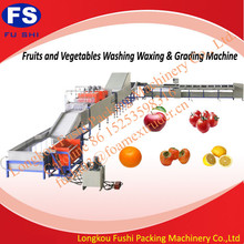 Hot Sale Fushi Brand CE and ISO 9001 fruit sorting machine , citrus fruit washing waxing and grading machine