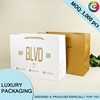 Factory Supply Colourful Paper Bag With
