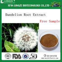 Dandelion extract 10:1, dandelion root extract Flavonoid 4% lowest price