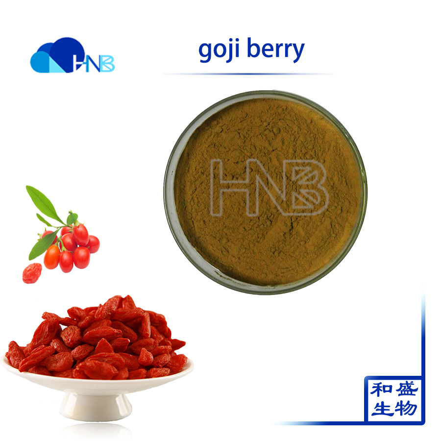 HNB Factory Supply Pure Natural Organic Goji Berry Extract Wolfberry Polysaccharides for anti-aging anti-cancer with best price