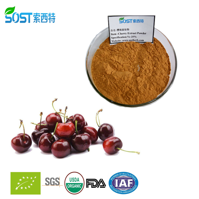 Certificated ISO New Product Acerola Extract