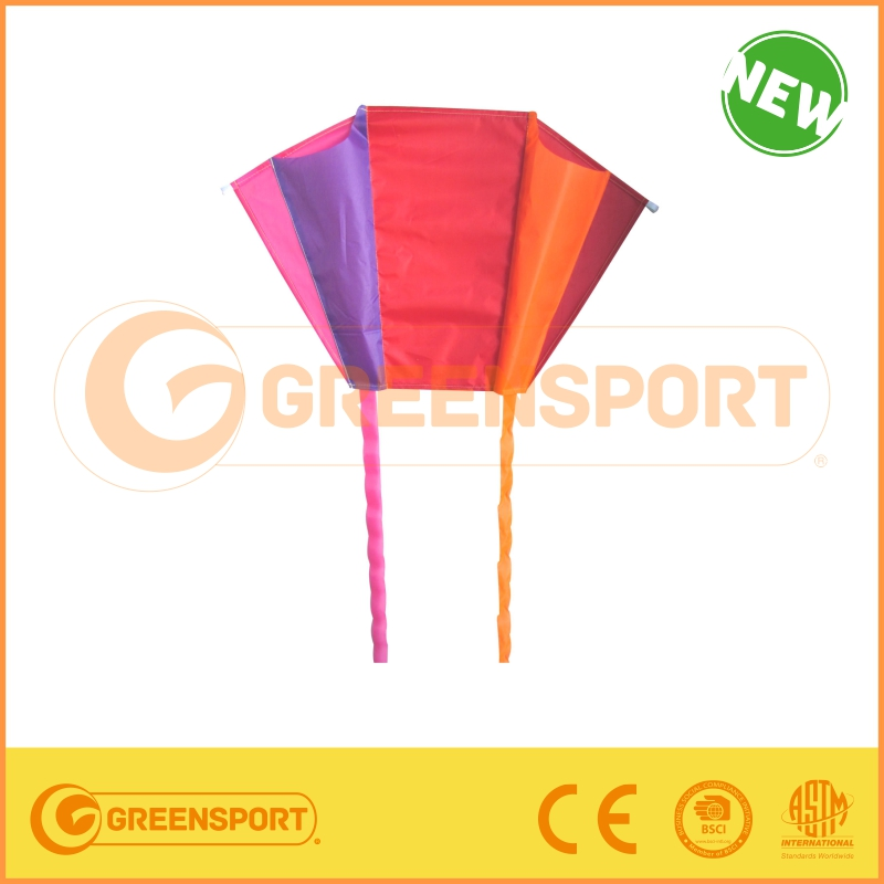 stunt kite power kite