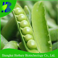 High quality organic vegetable seeds green pea seesd for growing