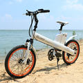 Seagull 20inch electric mountain bike bosch electric bike