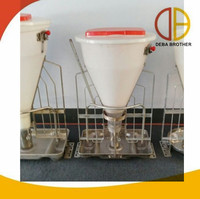 Pig farm use dry and wet feeder for weaner pigs and fatten pigs