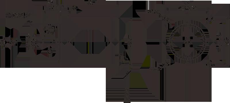 Ac 24v Synchronous Motor Electric Motor