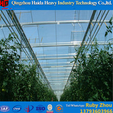 Manufacture Plastic-Film Agricultural Greenhouse