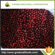 HACCP frozen fresh lingonberry