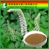 Gotu Kola Extract/Natural Herbal Extract/Triterpenoid Saponis 10%~80% Hplc/High Quality Gotu Kola Extract