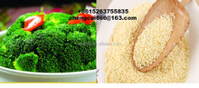 chicken essence/granular compound seasoning/chicken powder halal