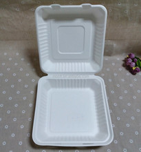 Bagasse Biodegradable Dinnerware Disposable Clamshell Bento Box