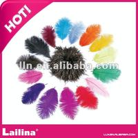 mixed color ostrich feathers decoration