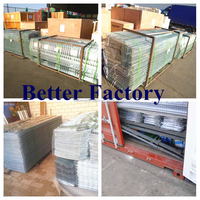 BETTER FACTORY chicken egg layer cages for Kenya farm