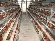 Layer cages/Chicken layer cages/ Laying chicken cages