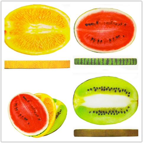China factory wholesale fruit shape pet cooling mat dog cushion custom pet bed
