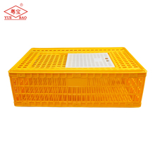 Poultry plastic transportation type crate use breeding automatic folding chicken cage for sale in philippines