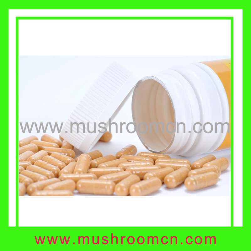 Cordyceps Sinensis capsule improve kidney and lung function