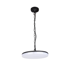 Hot Sale LED Glow Pendant Lamp And Modern Hanging Light Chandelier