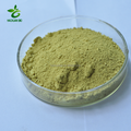 CAS:84696-15-1 5% Ginger Extract Gingerol