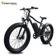 Japanese 500W Import Long Range E Bike