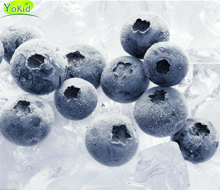 Prices Wholesale For Bulk Frozen Blueberries