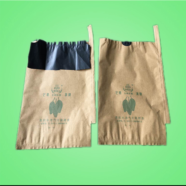 Free Sample Waterproof Fruit Paper Growing Protective Bag For Mango Popular in Malaysia Vietnam