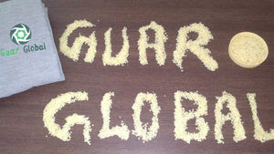 GUAR GUM SPLITS- CHINA