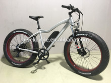 Aluminum frame electric fat bike MTB bike 500W in dirt road for exercise