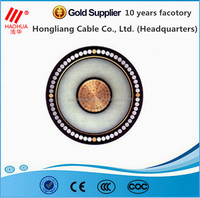 Medium voltage 6/10kV Single core steel wire armored underground electrical cable
