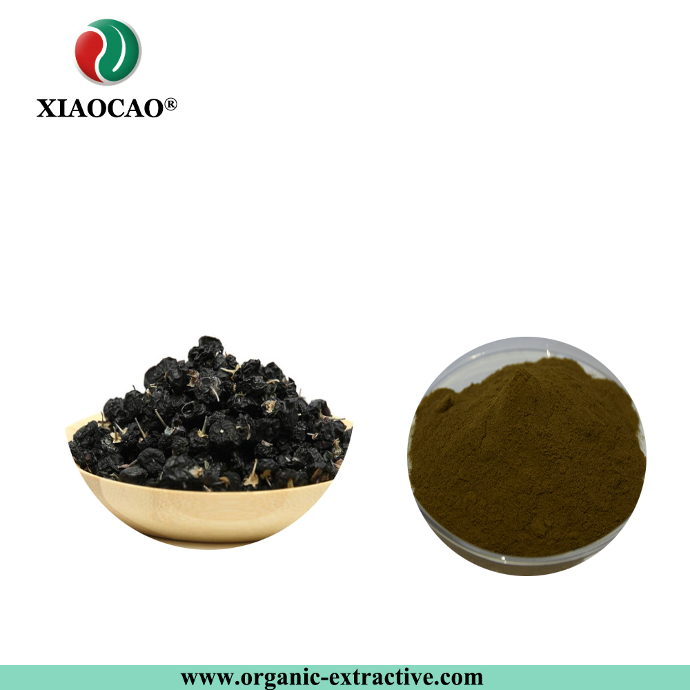 Best Quality Chinese Herb Medecine Black Goji Berry Black Wolfberry Fruit Extract