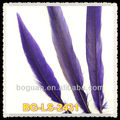 Dark purple Pheasant Tail Feather