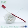 Company European American Design and style disposable hotel toothbrush and paste is hotel toothbrush