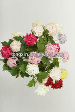 stable supplying high quality factory variegate color neon flowers