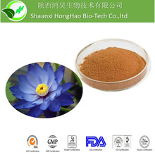 Herb Medicine For lose Weight 2%Nuciferine Organic Blue lotus extract