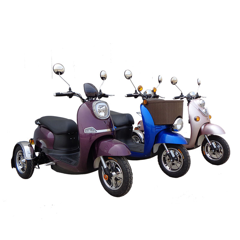 48V 500W Adult Standing Electric Trike Tricycle