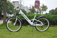 2014 New electric bike,mountain electric bike,li-ion best ebike reviews 2013